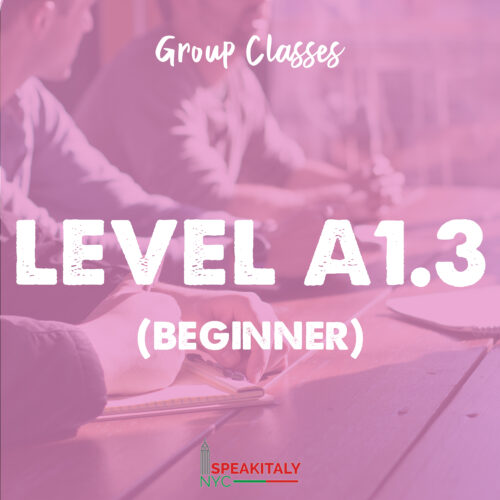 Group Classes - Level A1.3 (Beginner)