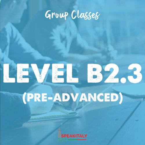 Group Classes - Level B2.3 & B2.4 (Pre-Advanced)
